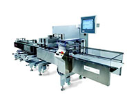 Pack 301 IN Inverted Horizontal Flow Wrapping Machinery